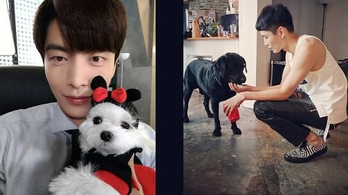 A picture of Lee Min-ki is a dog lover.
