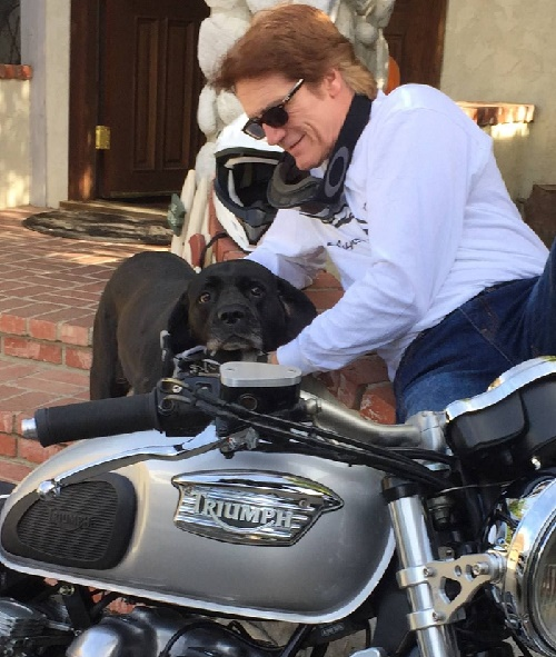 Barry Van Dyke got caught taking his dog in a ride on his motorcycle.