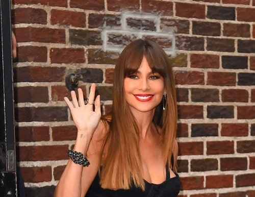 A picture of Sofia Vergara's tattoo on her hand.