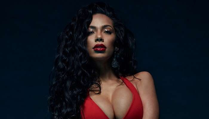 Interesting Facts About  Erica Mena - Safaree Samuals' Wife & Baby Mama